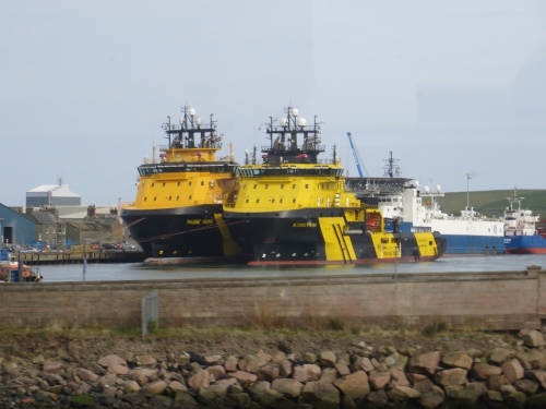 Two large yellow ships