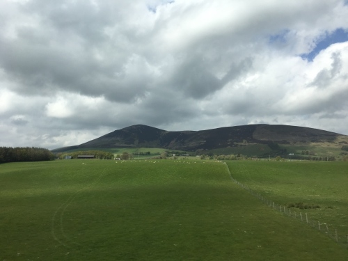 Rolling grassland with a hill behind